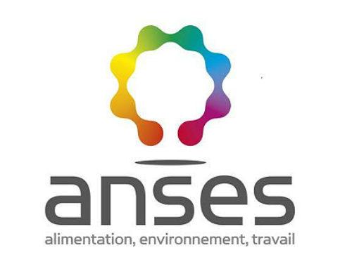 Chiroptères et éclairage par LED – un nouveau rapport de l'ANSES